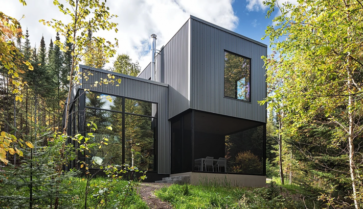 Modern Cabin with Floor-to-Ceiling Windows Floats in the Trees